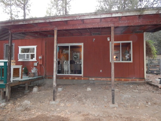 Here's the space with the flooring and siding completely removed!